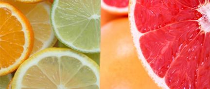 citrus small